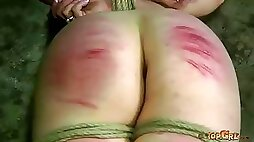 Short haired brunette brunette slave is bounded with ropes and punished