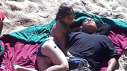 Beach Safaris 14HD